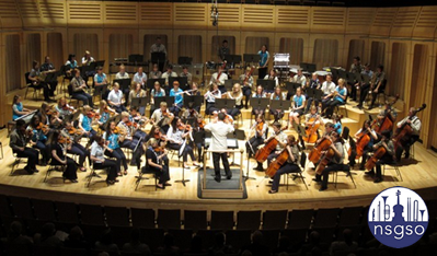 National Scout & Guide Symphony Orchestra all set for summer performances